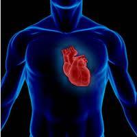 blood pressure treatment kleinburg, vaughan, ontario