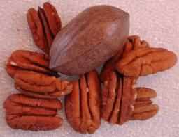 cholesterol treatment, kleinburg, vaughan, ontario