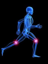 Pain/Injuries