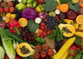nutrition resized 600
