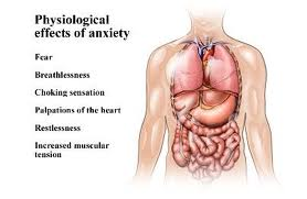 Anxiety Effects