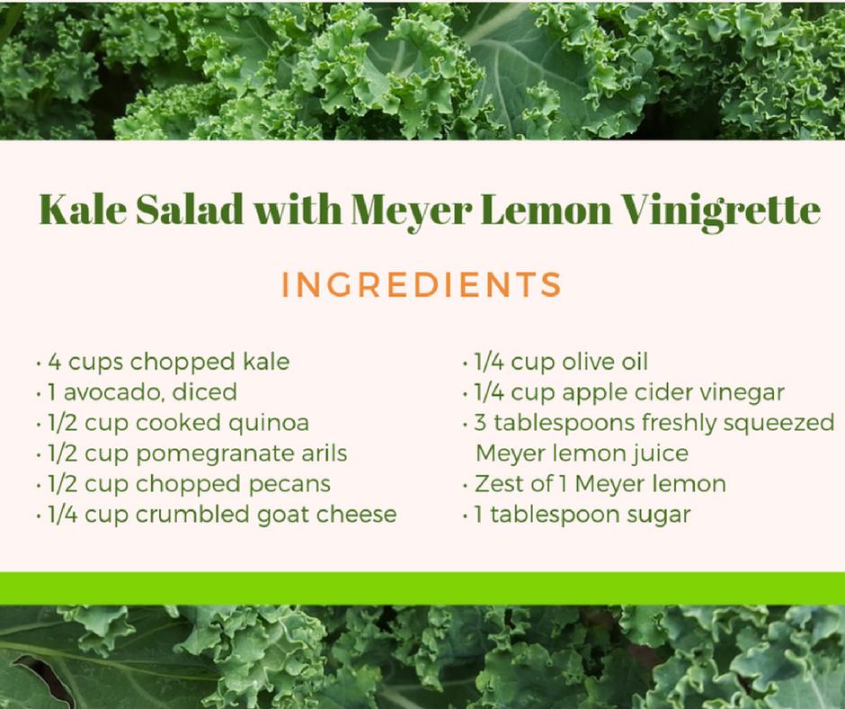 #10 Kale Salad