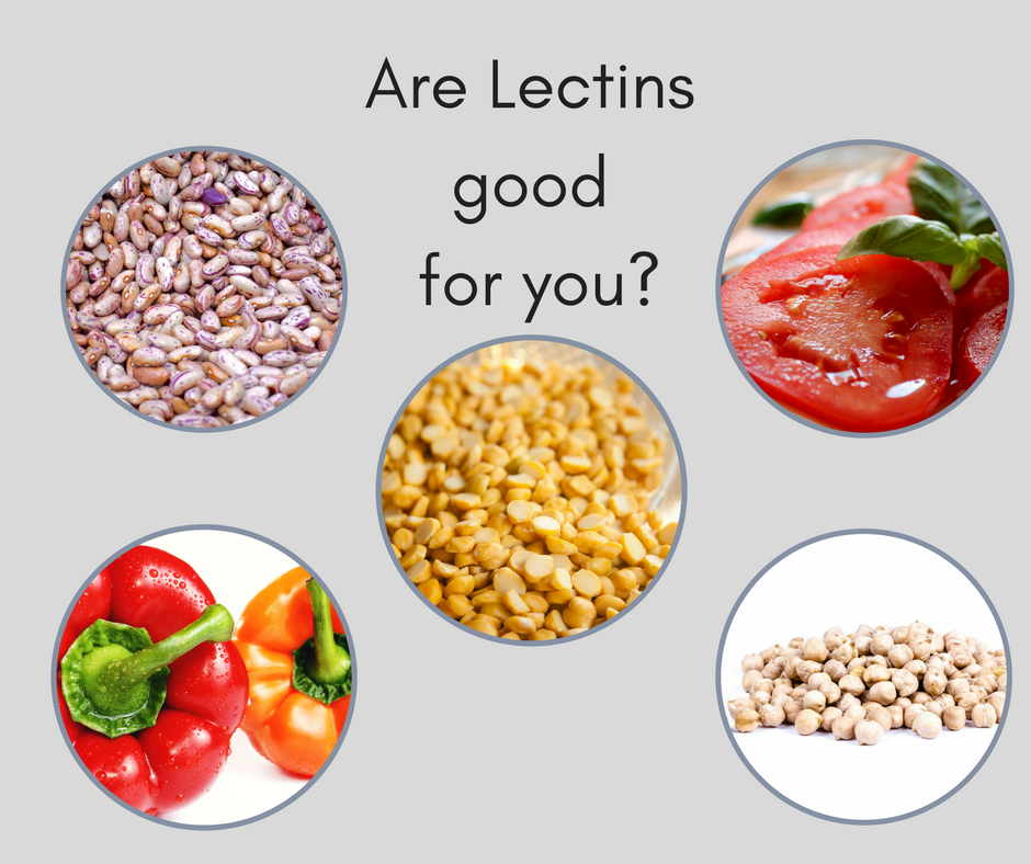 #12 Lectins.png