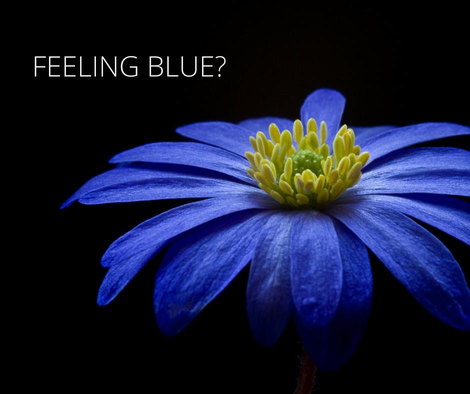 #13-feeling-blue