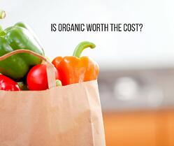 Is organic food worth the cost