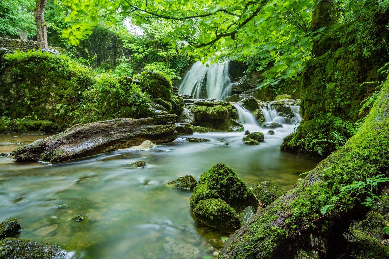 beautiful-cascade-creek-460621
